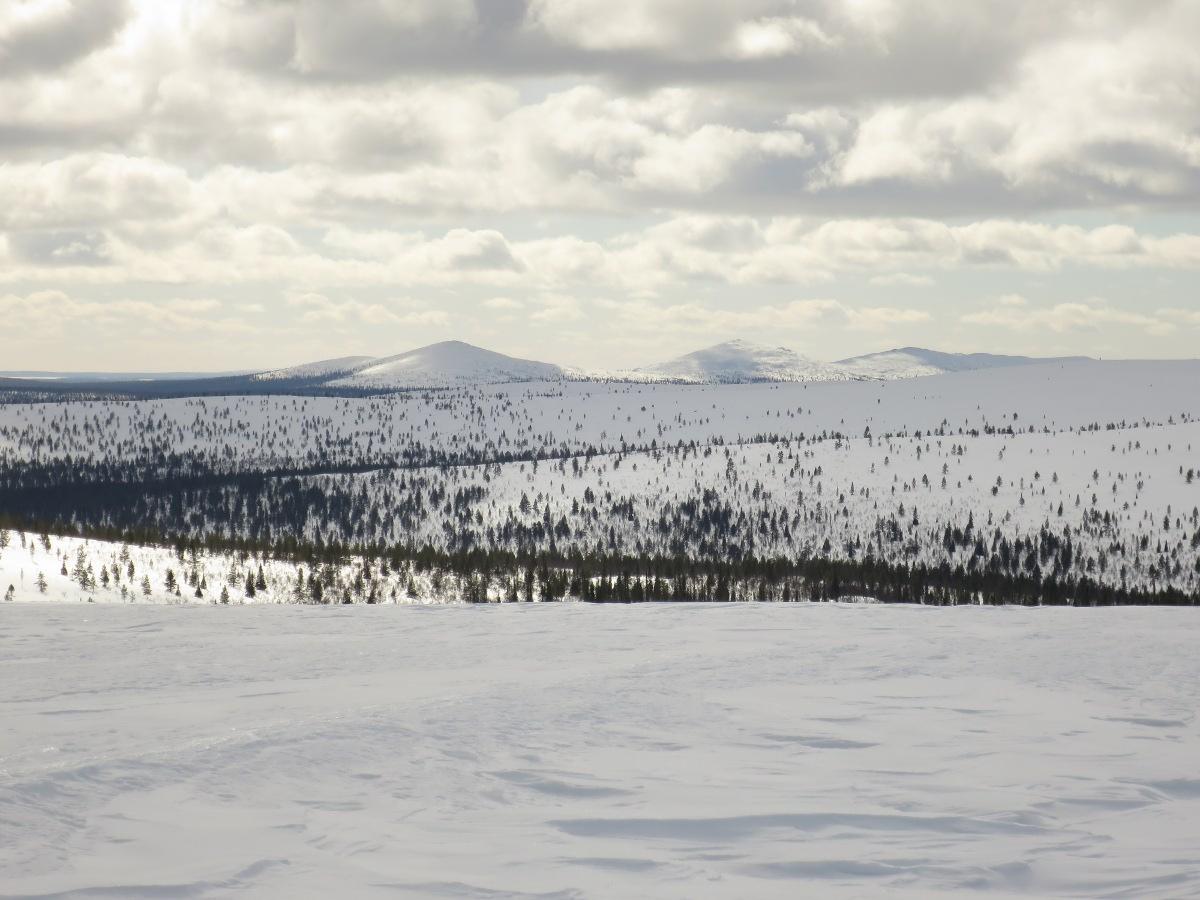 Maisema Niilanpäältä