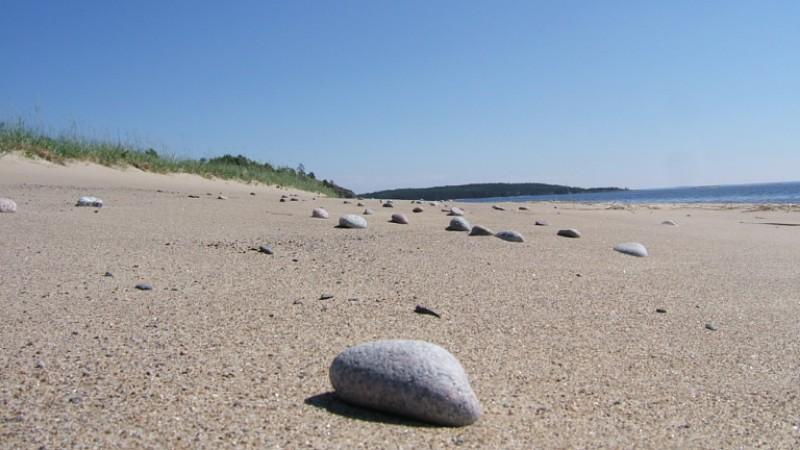 Kojonsaaren hiekkarantaa.