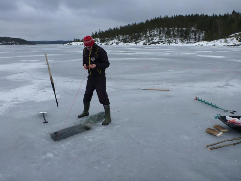 Vetonarua vetelemällä uittolauta etenee jään alla.
